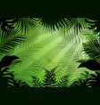 seamless with tropical forest background vector image vector image