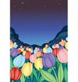 tulip farm vector image vector image