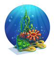 underwater algae vector image vector image