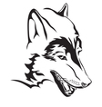 wolfs head vector image vector image