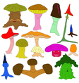 colorful mushrooms vector image