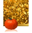 composition for thanksgiving invitation eps 8 vector image