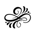floral calligraphy element flourish vector image vector image