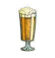 hand drawn color glass with froth bubble beer vector image vector image