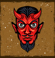 red devil head with horns vector image
