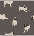 seamless pattern with pug dog vector image vector image