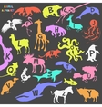 Animal alphabet poster for children Animal vector image vector image