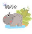 cute cartoon hippo for vector image vector image