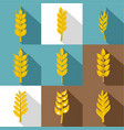 grains icon set flat style vector image vector image