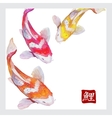 Japanese watercolor carps koi swimming