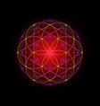 seed life symbol sacred geometry indian mandala vector image vector image