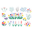 set spring flowers in a flat style isolated vector image vector image