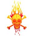 Skull fire white vector image vector image