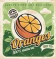 Vintage poster template for orange farm vector image
