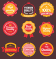 Vintage retro flat badges labels vector image vector image