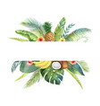 watercolor banner tropical leaves and vector image