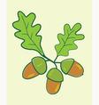 acorns vector image vector image