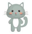 animal cat vector image
