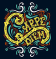 carpe diem typographical background with unique vector image vector image