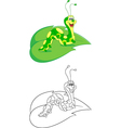 Caterpillar coloring page vector image vector image