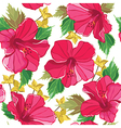 Floral seamless pattern with hibiscus hand-drawing vector image vector image