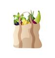 modern textile eco handbag with vegetables vector image