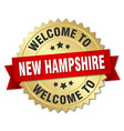 New Hampshire 3d gold badge with red ribbon vector image