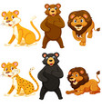 set of whild animal character vector image
