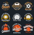sport t-shirt set with balls vector image vector image