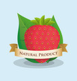 strawberry natural product ribbon design vector image vector image