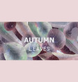 autumn leaves background watercolor fall vector image