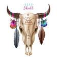 boho cow skull vector image vector image