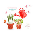 different herbs planted in flowerpots on white vector image