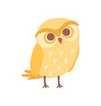 lovely cartoon yellow owlet bird character vector image
