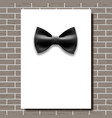 bow tie poster empty white a4 black bow vector image vector image