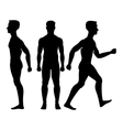 Collection silhouettes of man in front and side vector image vector image