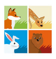 cute animals cards vector image