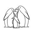 cute penguins birds characters vector image vector image
