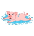 Funny piggy lies and smiling on water puddle vector image vector image