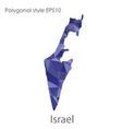 isolated icon israel map polygonal geometric vector image vector image