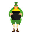 leprechaun and pot of gold dwarf in green clothes vector image