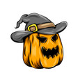 monster yellow pumpkin with witcher hat vector image vector image