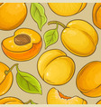 apricot fruit pattern on color background vector image vector image