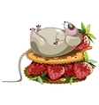 Fat lazy mouse vector image