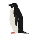 penguin geometric style isolated object vector image vector image
