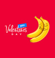 valentines day background two funny smiling vector image vector image
