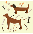 Flat design of the dog Doberman and dachshund vector image
