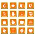 apple icons set orange vector image vector image