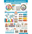 Bid City Infographics vector image