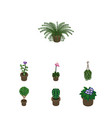 isometric flower set of tree flowerpot plant and vector image